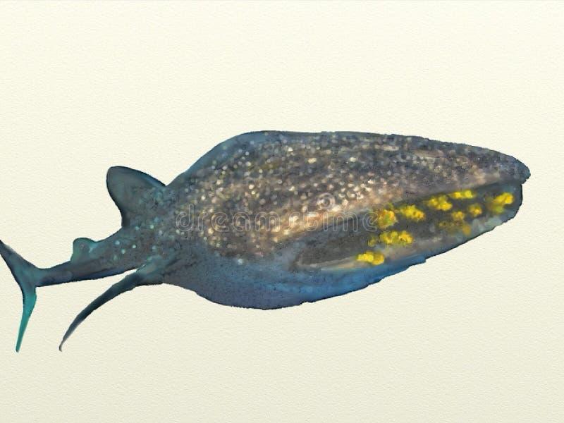 鲸鲨水彩 库存图片