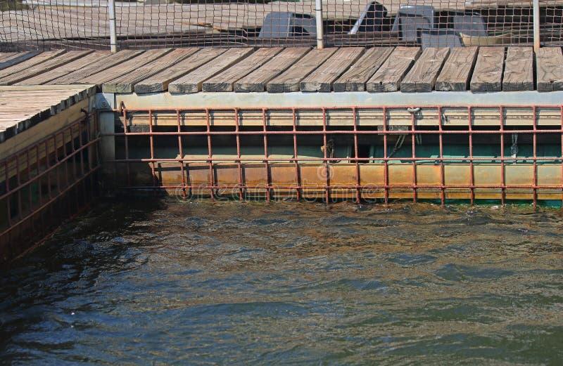 鳄鱼和河马潜水笼子在KAVANGO河 免版税图库摄影