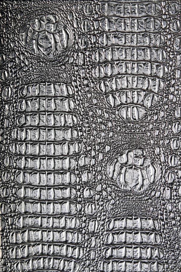鳄鱼纹理 免版税库存照片