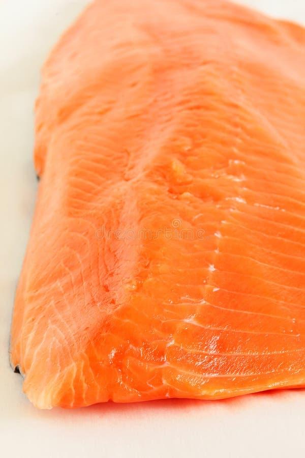 Download 鳟鱼 库存图片. 图片 包括有 午餐, 膳食, 原始, 成份, 垂直, 背包, 橙色, 没人, 鳟鱼, 健康 - 30328057