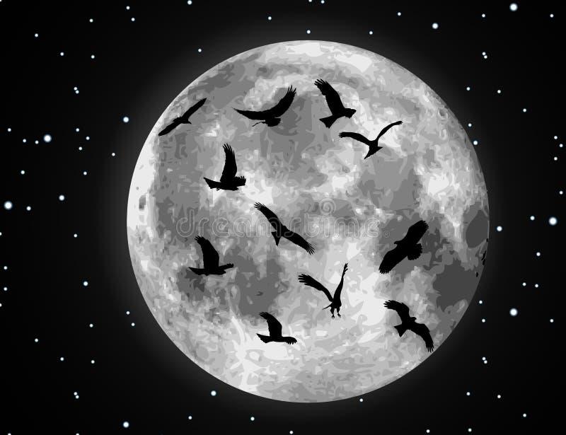 鸟例证月亮向量 向量例证