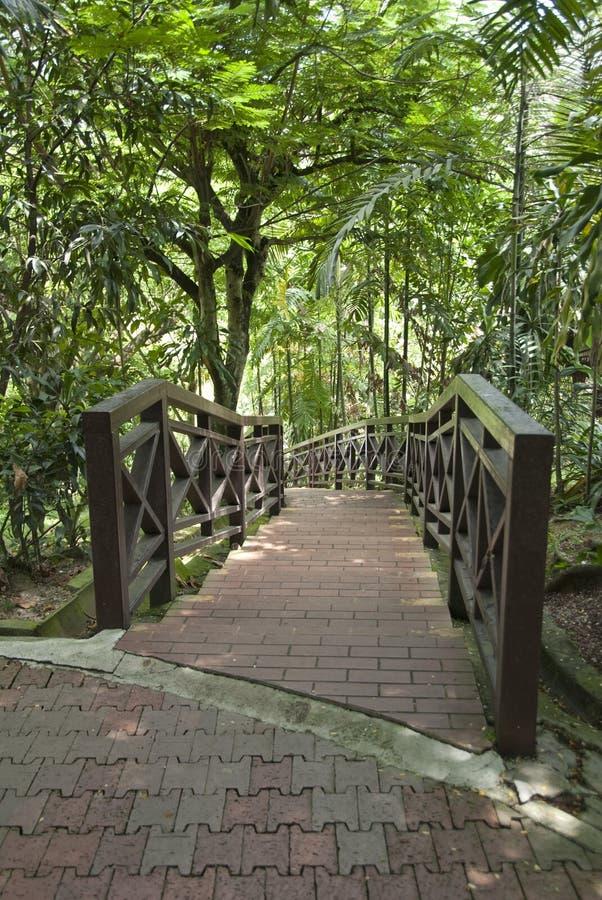 鸟吉隆坡公园 免版税图库摄影