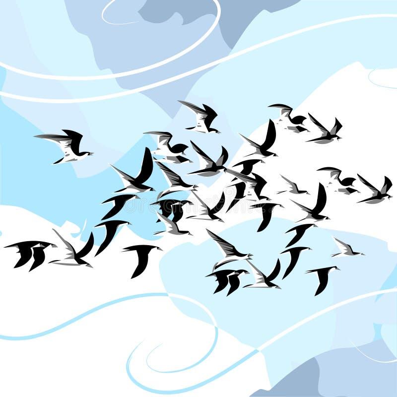 鸟向量 库存图片
