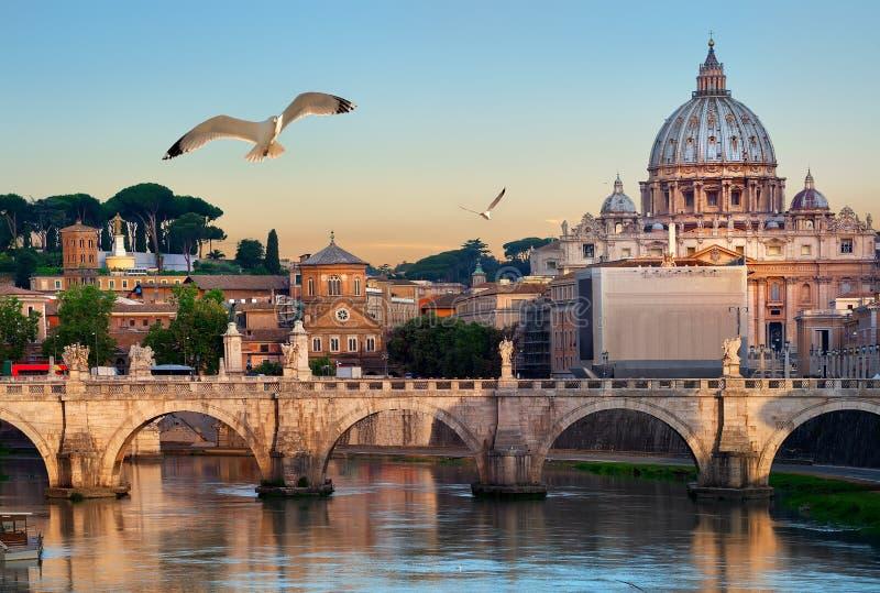 鸟和梵蒂冈 库存照片