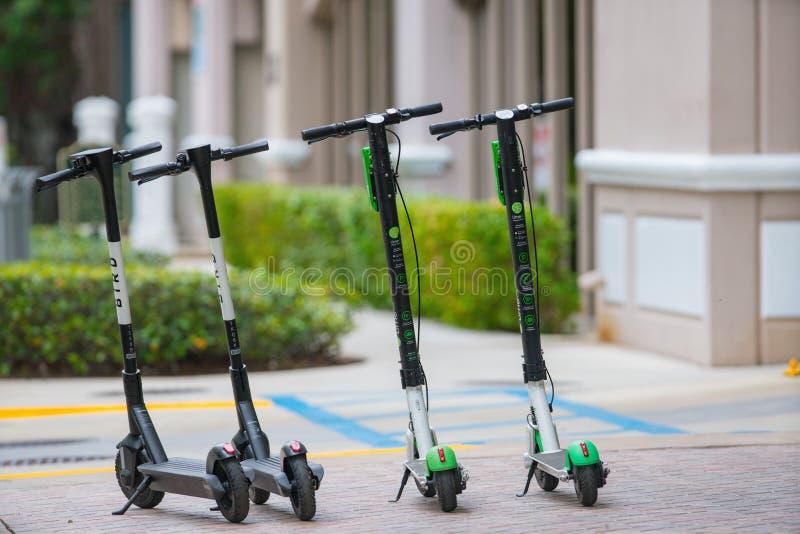 鸟和石灰滑行车可利用为在街道上的租 图库摄影