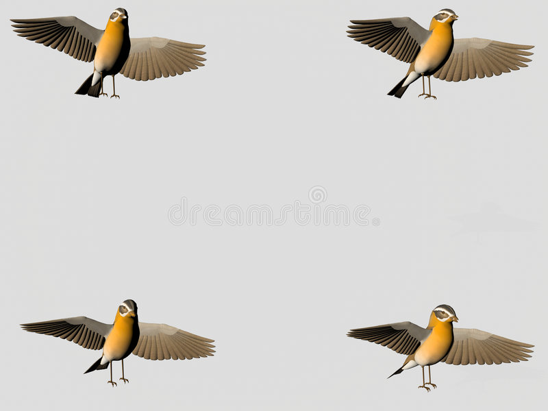 鸟复制空间 皇族释放例证