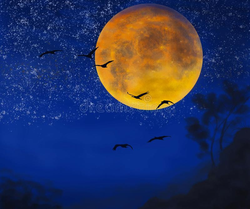 鸟夜 向量例证