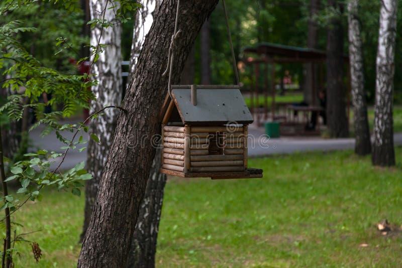 鸟居住的一个木鸟舍,在反对背景的不同颜色被绘创造性地 免版税库存照片