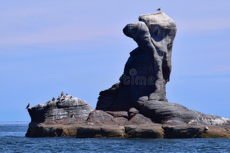 鸟岩石,岩石精神:Vulcanic在光环海岛,洛雷托省墨西哥上的岩层 免版税库存照片
