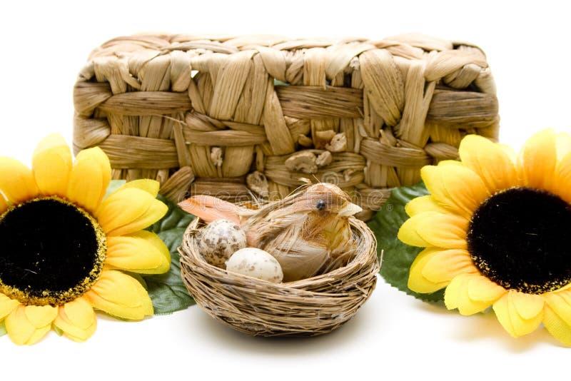 鸟巢和向日葵在韧皮部篮子前 免版税库存照片