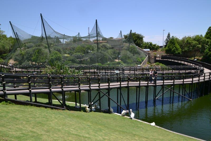鸟庭院公园 库存照片