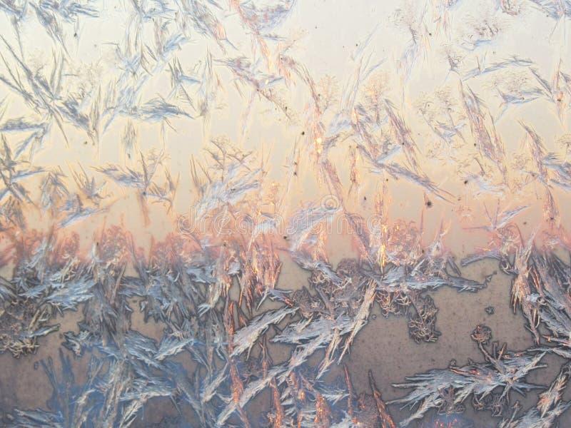 鸟形状霜在玻璃窗的冰晶形成 在早晨浅粉红色的晴朗的天空背景的Frostwork样式 库存照片