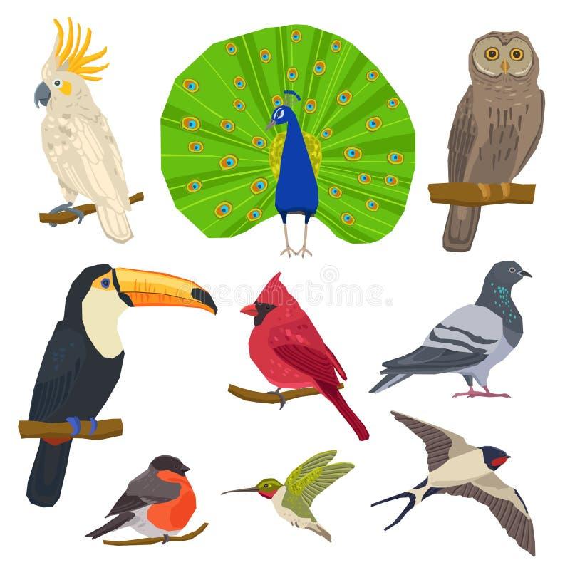 鸟得出的象集合 向量例证