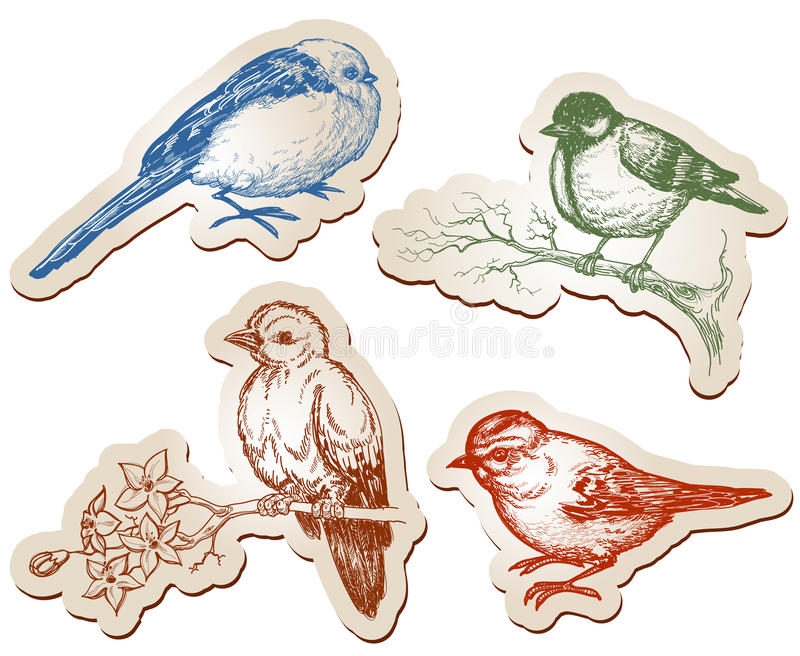 鸟收集 向量例证