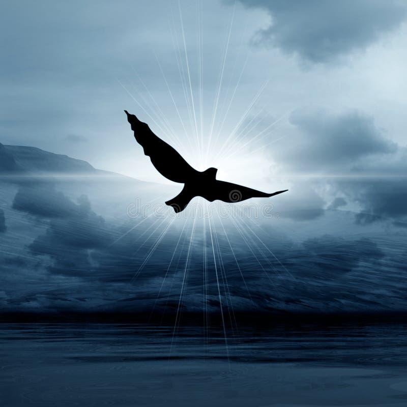 鸟有薄雾的天空 库存例证
