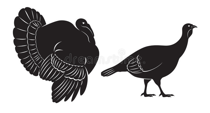 鸟火鸡 皇族释放例证