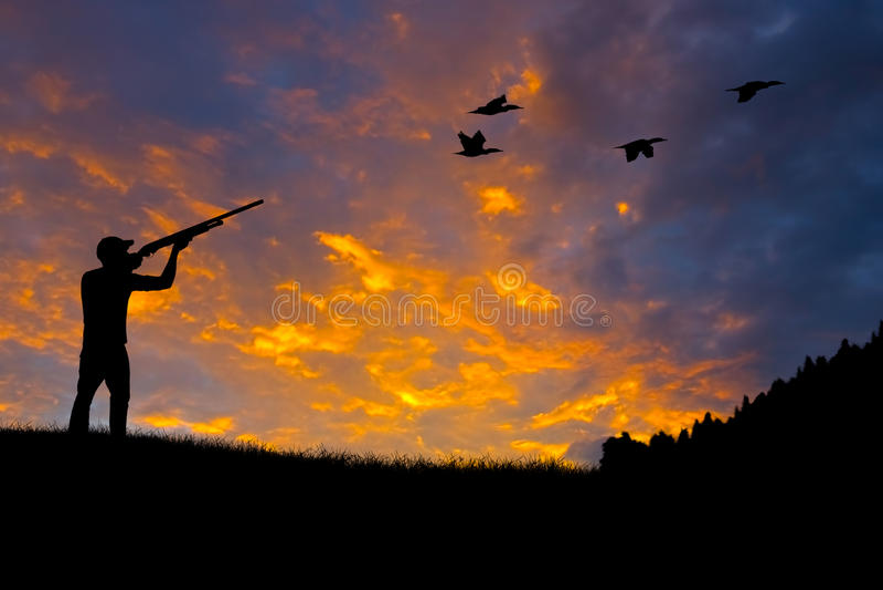 鸟狩猎剪影 免版税库存图片