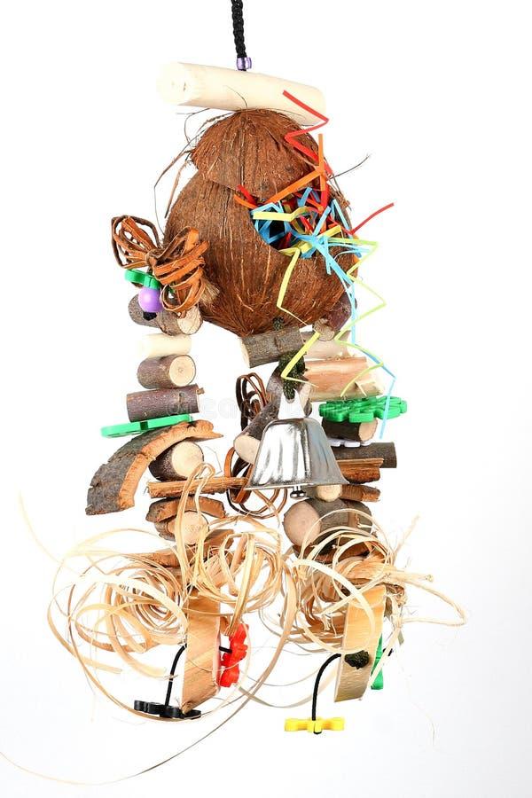 鸟玩具用椰子 库存照片