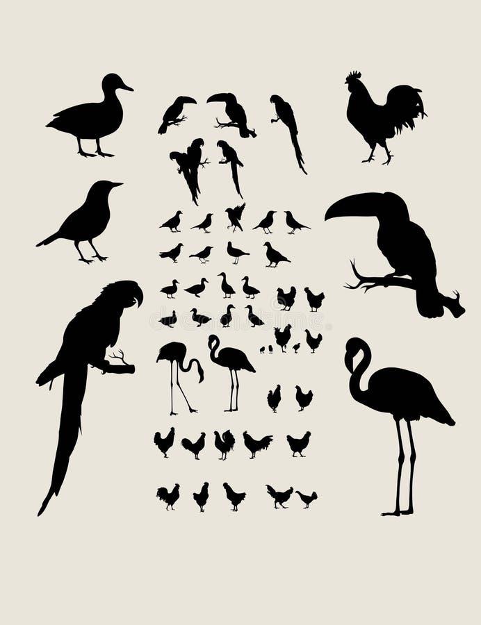 鸟现出轮廓汇集 库存例证