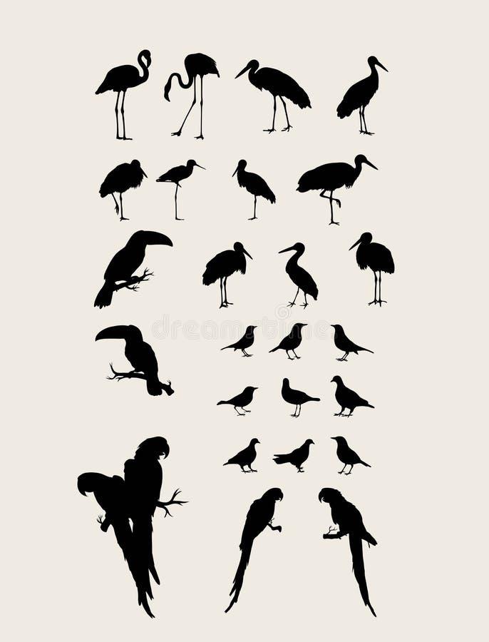 鸟现出轮廓汇集 皇族释放例证