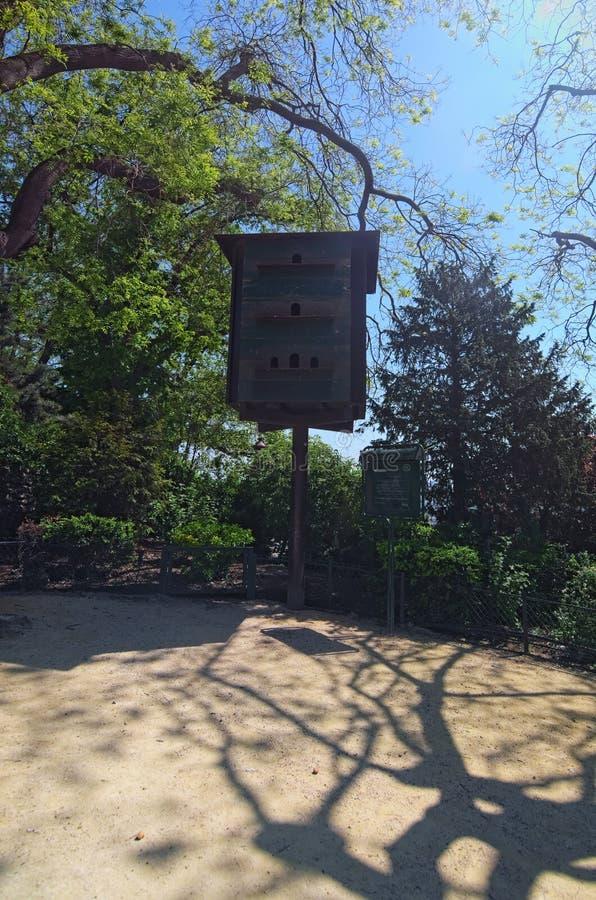 鸟的大温室在Sacre Coeur大教堂附近的小公园在蒙马特小山  在公园路径晴朗ramenskoye的春天附近的城市日莫斯科 法国巴黎 免版税图库摄影