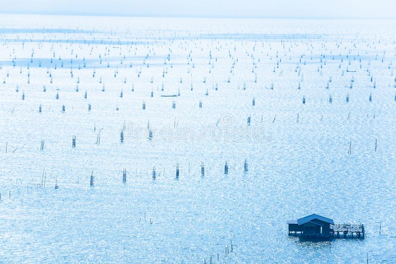 鸟瞰图、很多传统鱼陷井、木浮动房子和渔夫渔船的在宋卡湖,唯一 免版税库存照片