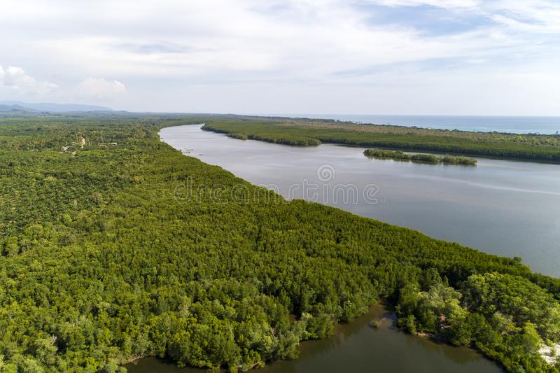 鸟瞰图寄生虫被射击美丽的自然风景河在美洲红树森林里和山在Phang Nga省泰国 库存照片