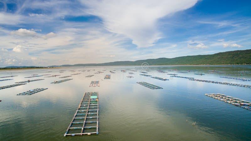 鸟瞰图,鱼小屋,鱼笼子, Khonkean,泰国 免版税图库摄影