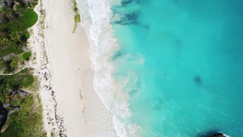 鸟瞰图:加勒比海滩巴巴多斯 免版税库存图片