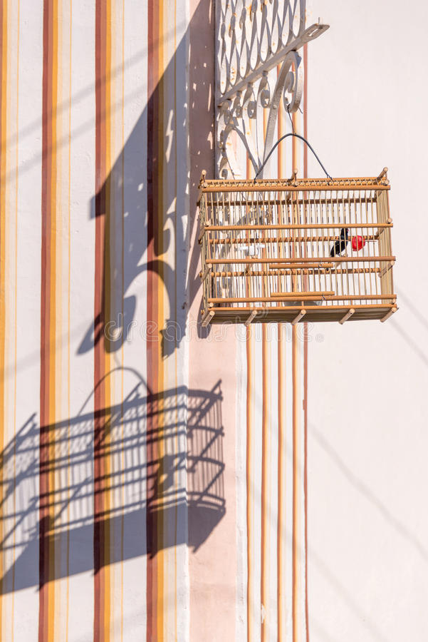 鸟笼,特立尼达,古巴 免版税库存照片