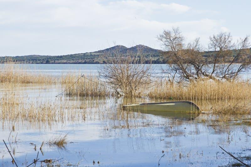 鸟类学储备 Vransko jezero 克罗地亚 图库摄影