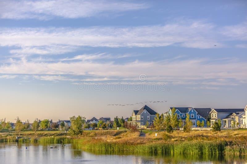 鸟群在多云天空的在Oquirrh湖 库存图片