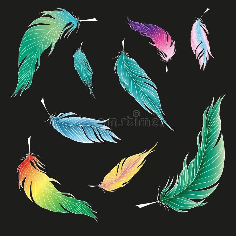 鸟羽毛  也corel凹道例证向量 皇族释放例证