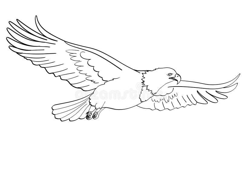 鸟老鹰,猎鹰 一个仿制减速火箭的可笑的样式的传染媒介 背景剪报查出的对象路径白色 书着色为 库存例证