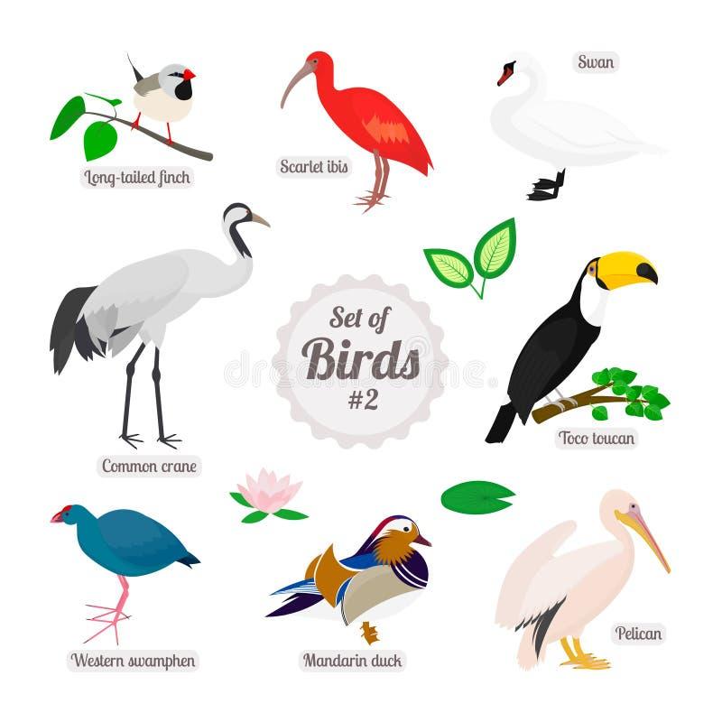 鸟设置了 库存例证