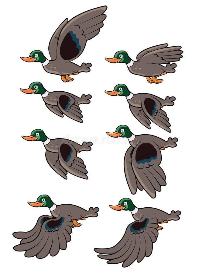 鸟飞行动画