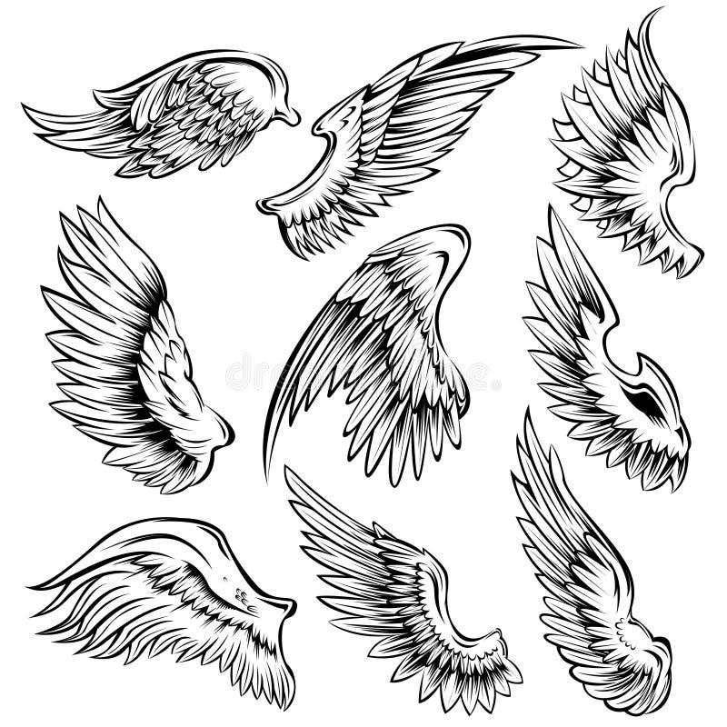 鸟飞过黑白色集合 皇族释放例证