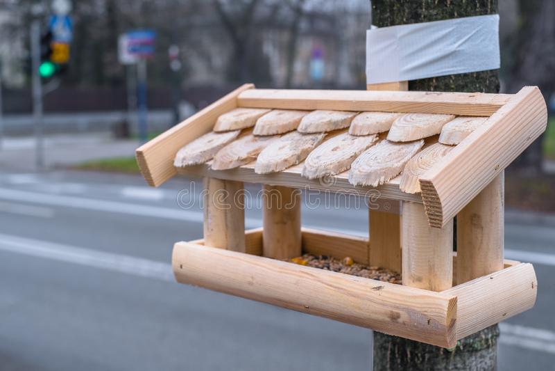 鸟饲养者在华沙在波兰 免版税库存图片