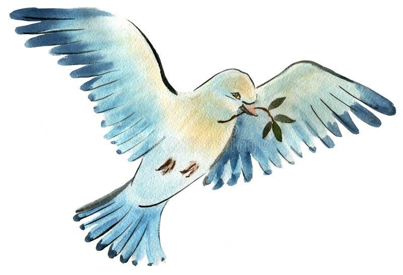 鸟鸠的水彩例证 库存例证