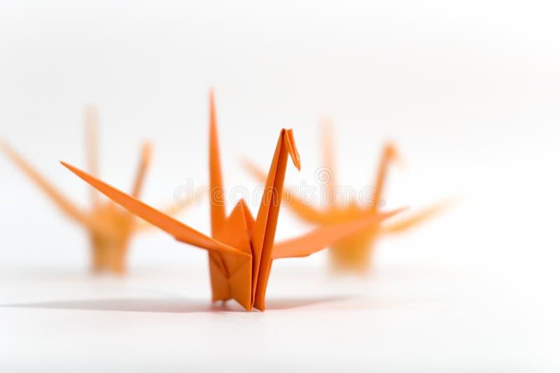 鸟origami 库存图片