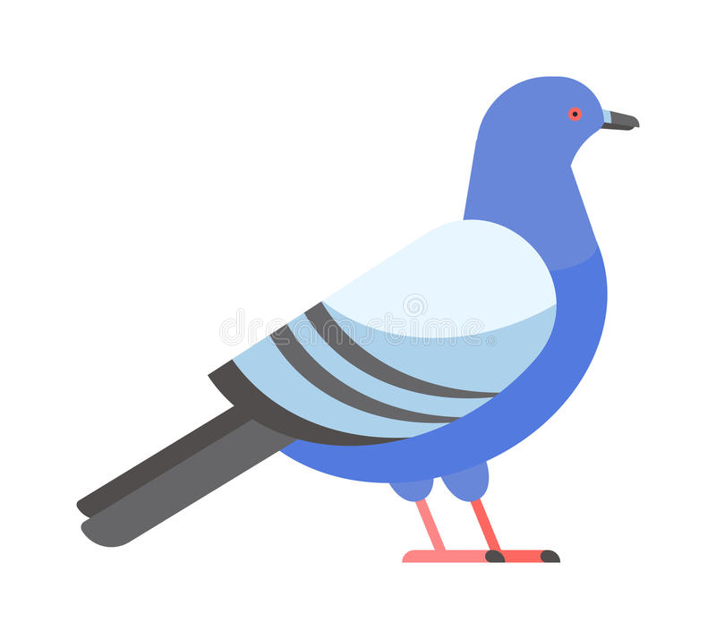 鸠传染媒介象例证动画片样式鸟 库存例证