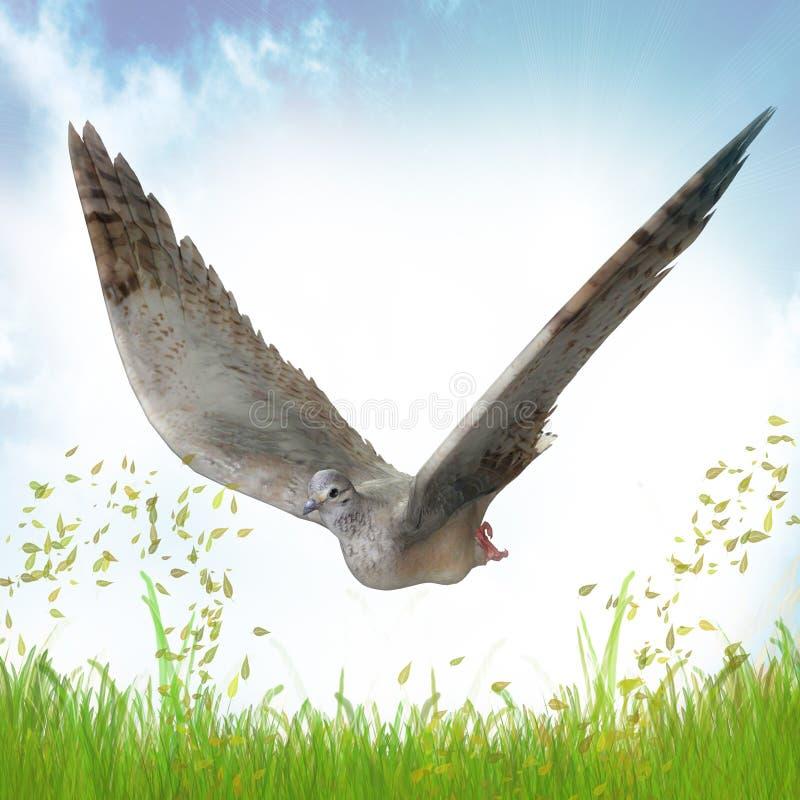 鸠和平标志 向量例证