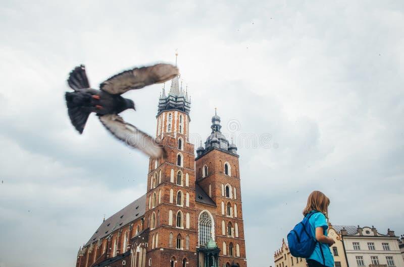 鸠飞行关闭在女孩反对克拉科夫地标  免版税库存图片