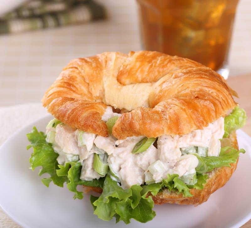鸡丁沙拉三明治 库存图片