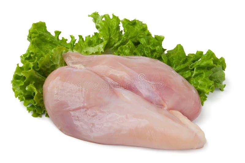 鸡内圆角 免版税库存照片