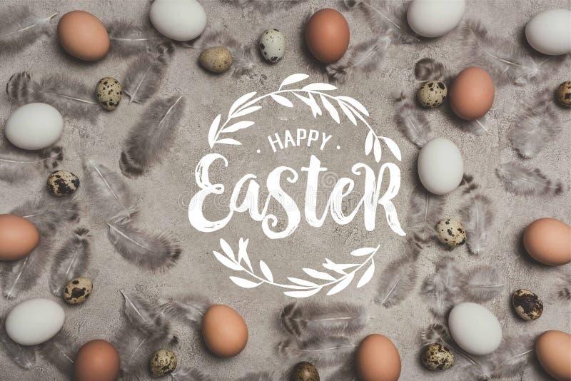 鸡和鹌鹑蛋框架凝结面上与羽毛和愉快的复活节字法 免版税库存图片