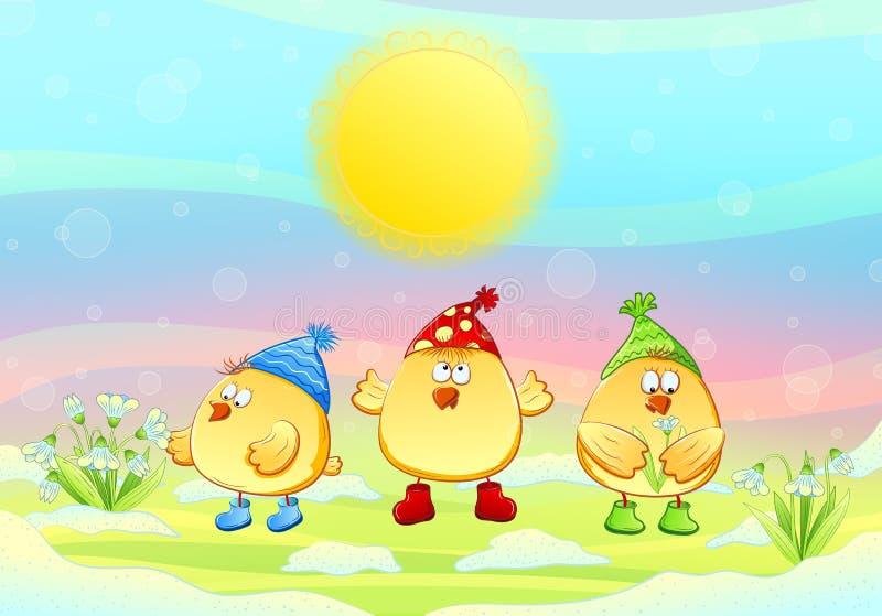 鸡和snowdrops。 库存图片