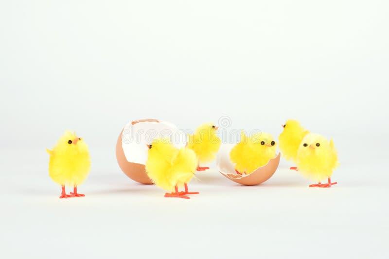 鸡在白色隔绝的玩具和蛋壳 免版税库存照片