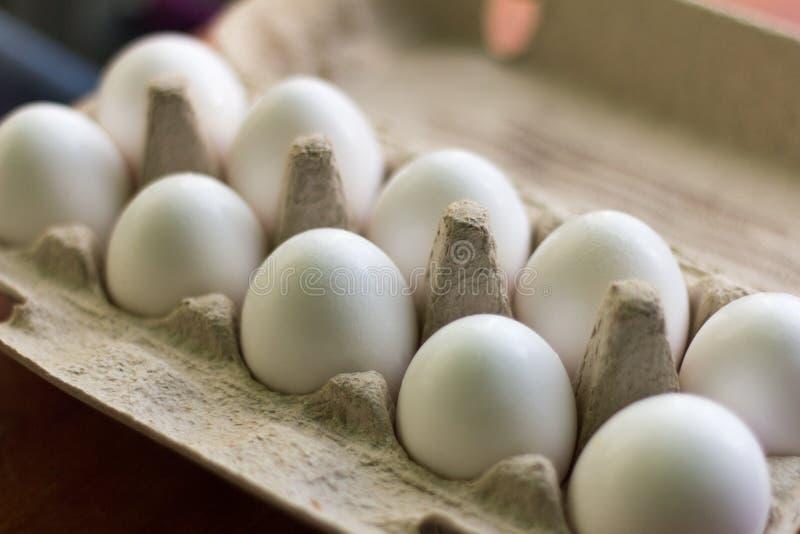鸡在箱子,煎蛋卷的成份怂恿 库存图片