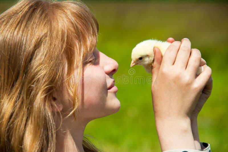 鸡女孩一点 免版税图库摄影